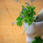 sites de medicina natural em francês